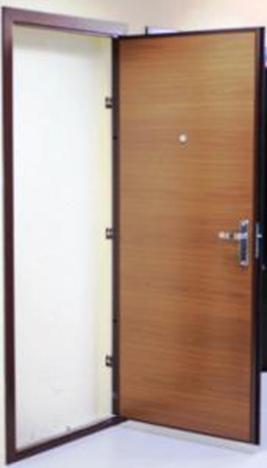 дверь входная 850